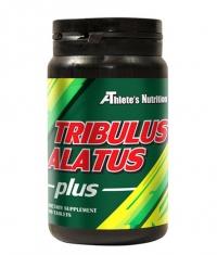 ATHLETE'S NUTRITION Tribulus Alatus / 90 Tabs