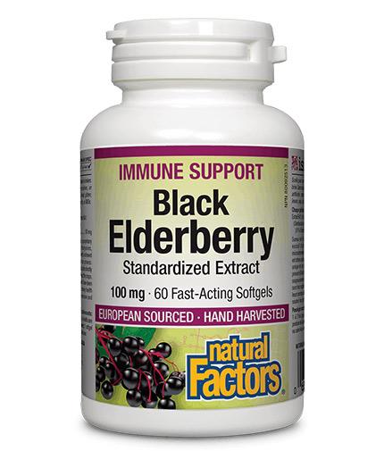 NATURAL FACTORS Black Elderberry 100 mg Standardized Extract / 60 Softgels