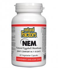 NATURAL FACTORS NEM® 500 mg / Natural Eggshell Membrane / 60 Caps