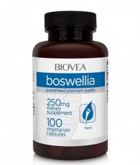 BIOVEA Boswellia 250 mg / 100 Caps