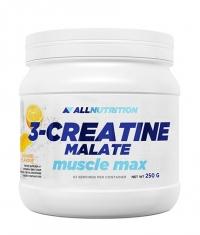ALLNUTRITION 3-Creatine Malate Powder