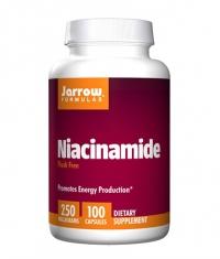 Jarrow Formulas Niacinamide 250 mg (Flush Free) / 100 Caps