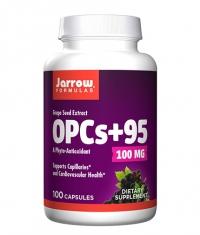 Jarrow Formulas OPCs + 95 Grape Seed Extract 100 mg / 100 Caps
