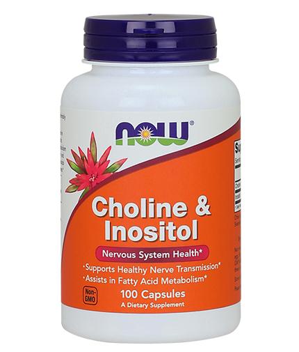 NOW Choline & Inositol 500mg. / 100 Caps.