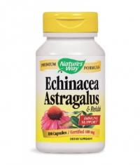 NATURES WAY Echinacea Astragalus & Reishi 100 caps