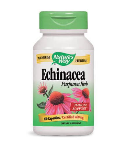 NATURES WAY Echinacea Purpurea Herb 100 Caps.