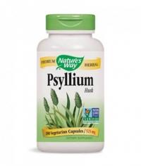NATURES WAY Psyllium Husks 180 Vcaps.