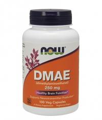 NOW DMAE 250mg. / 100 Caps.