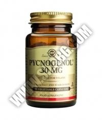 SOLGAR Pycnogenol 30mg. / 30 Caps.