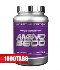 SCITEC Amino 5600 / 1000 Tabs.