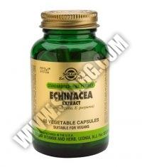 SOLGAR Echinacea Extract, S.F.P. 60 Caps.