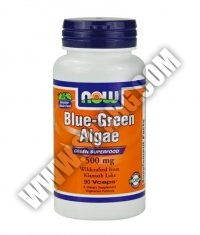 NOW Blue-Green Algae 500mg. / 90 VCaps.
