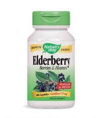 NATURES WAY Elderberry Berries & Flowers 100 Caps.