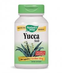 NATURES WAY Yucca Stalk 100 Caps.