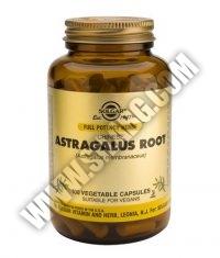 SOLGAR Astragalus Root, F.P. 100 Caps.